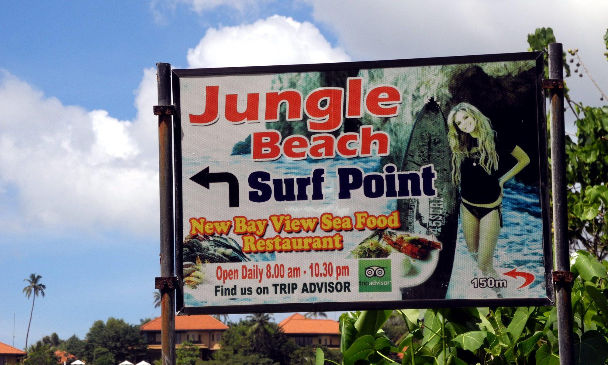 hp-junglebeach0